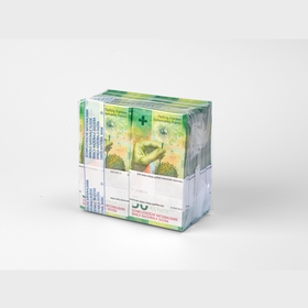 Bundles of vacuum-packed notes (back view)